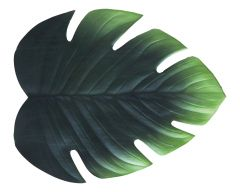 Tischset Blatt,grün